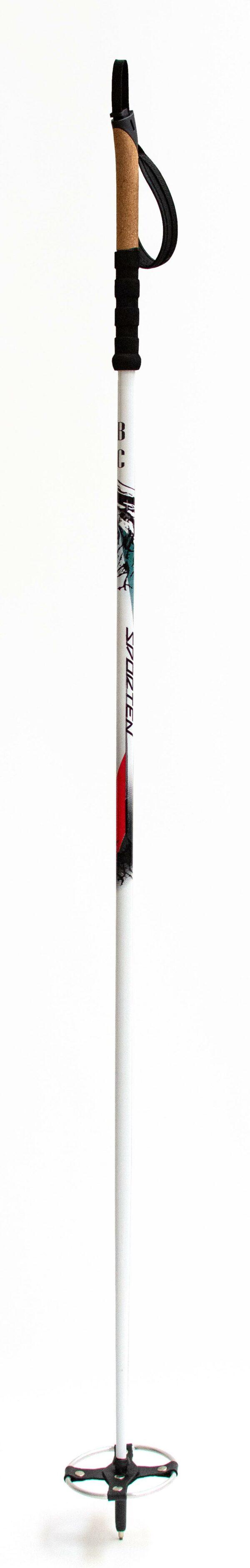 Sporten běžkařské hole Backcountry 2020_2021